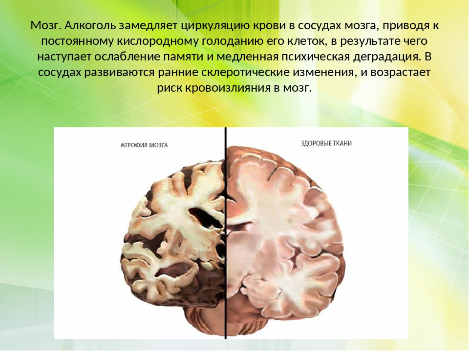 Как кофе влияет на сосуды головного мозга: сужает или расширяет
