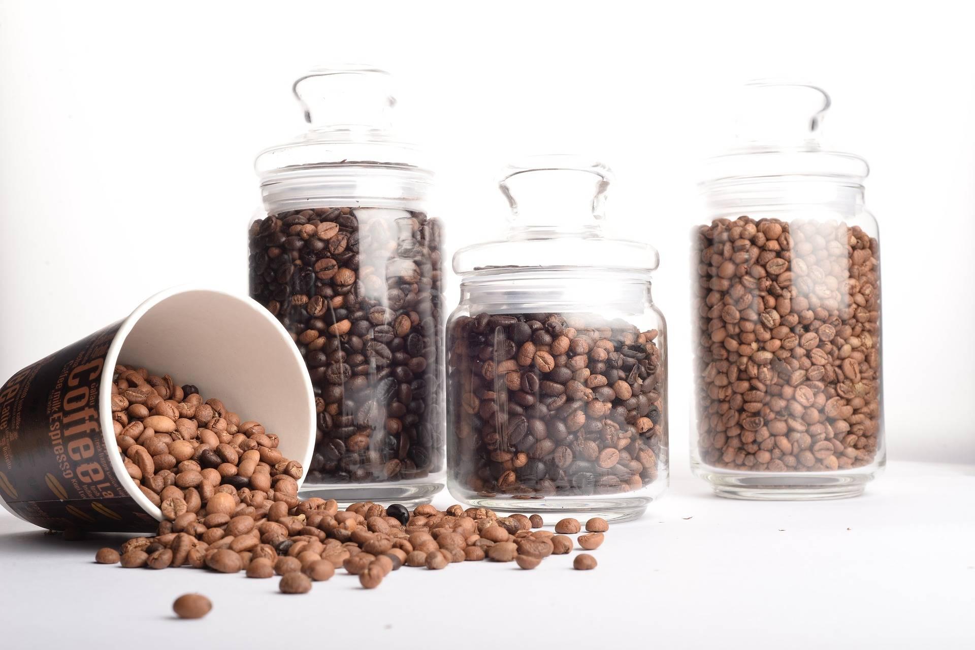 Кофе: польза и вред для здоровья человека