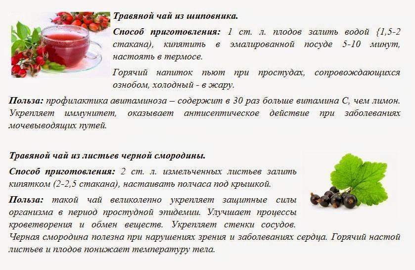Фиточай: рецепты вкусного травяного чая и их чудесные свойства