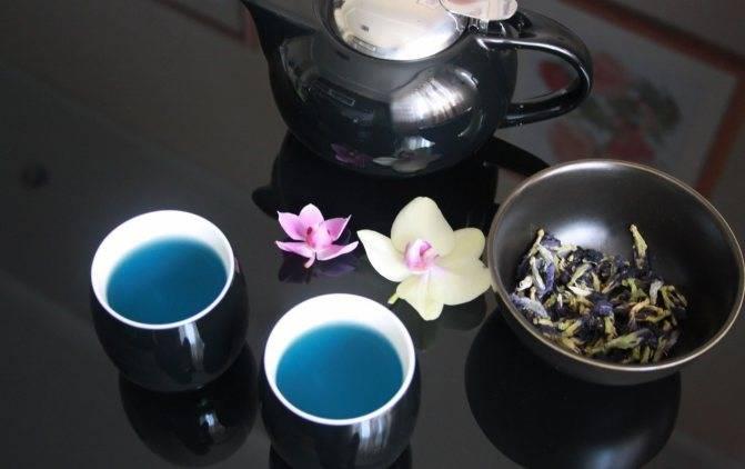 Пурпурный чай чанг шу: состав, польза, показания к применению