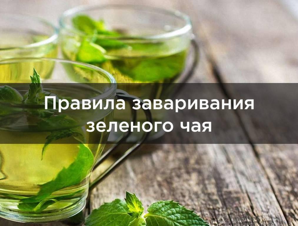 Зеленый чай при гв: можно ли его пить