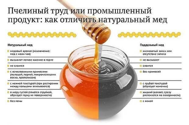 Какой зеленый чай самый лучший: топ-11 по версии контрольной закупки и экспертов tehcovet.ru в 2020 году