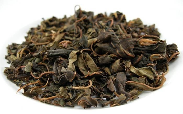 Листья вишни: полезные свойства и противопоказания, польза и вред, ферментированный чай