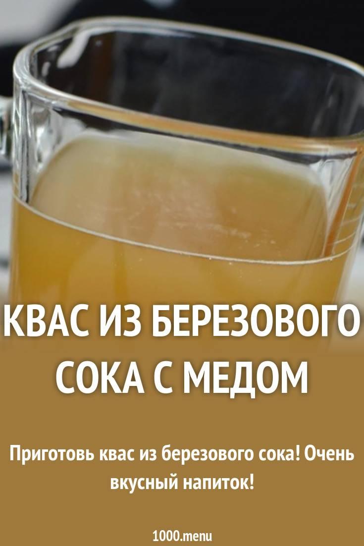 Квас из березового сока: самые простые и вкусные рецепты