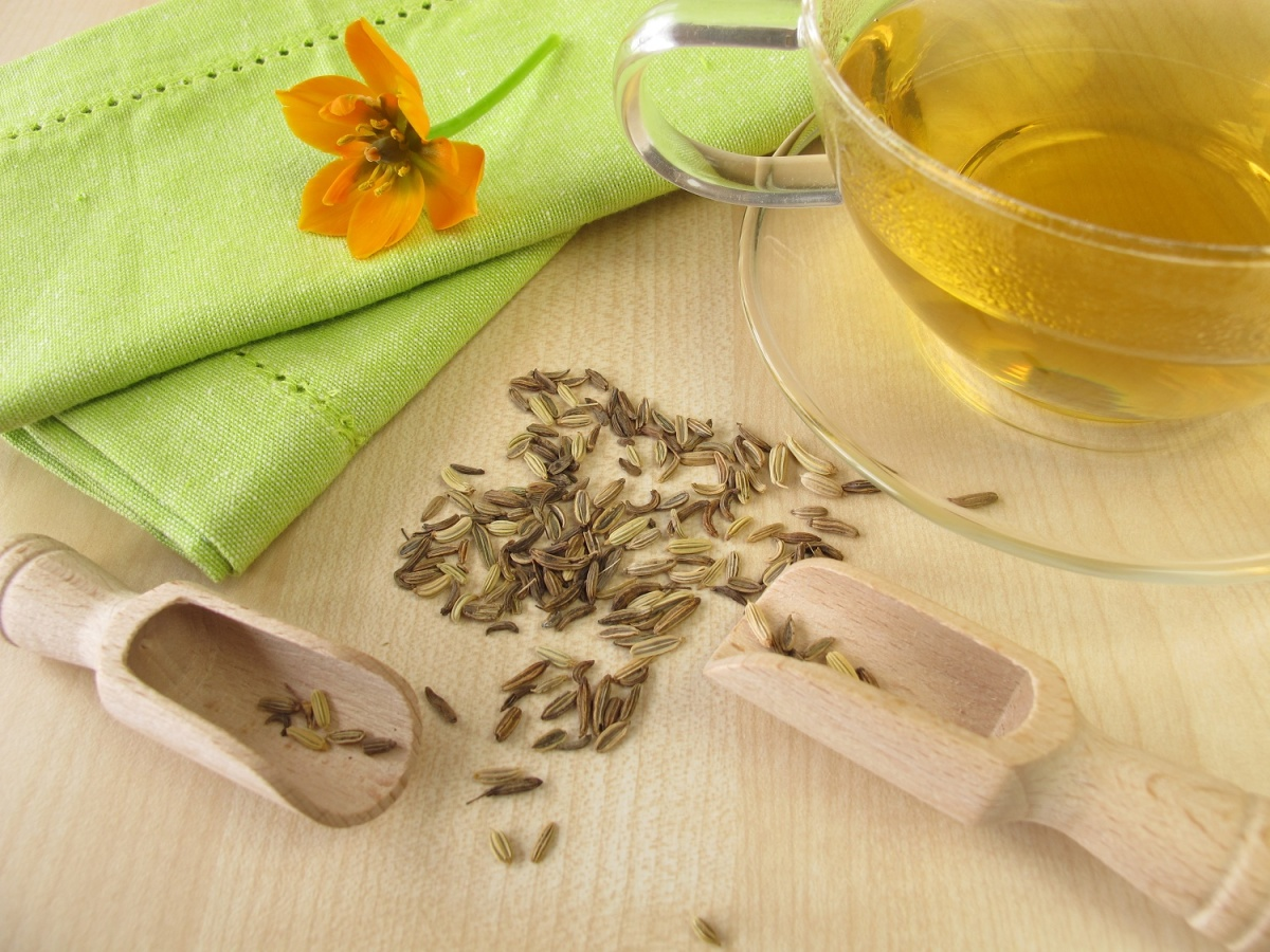 Травяной чай фенхель: как заваривать, полезные свойства