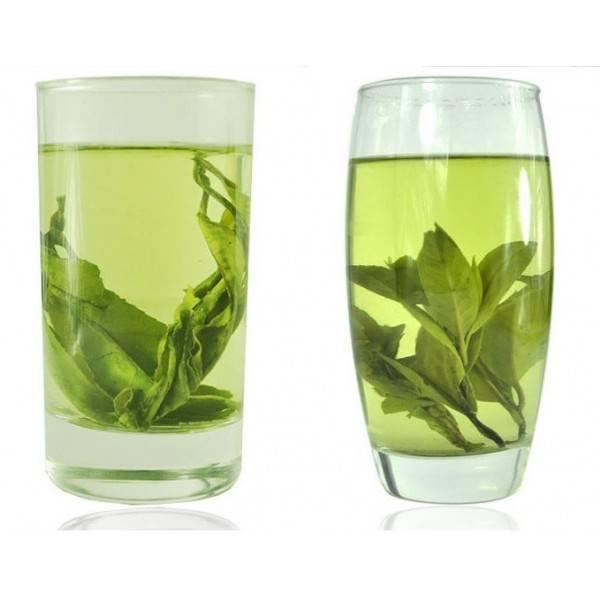 Свойства чая кудин: польза и вред, как следует заваривать
