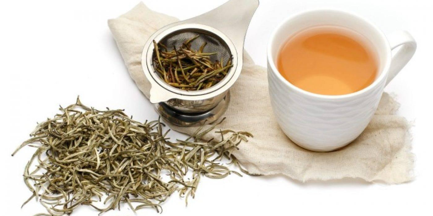 Виды белого чая, польза и вред. как правильно заваривать белый чай