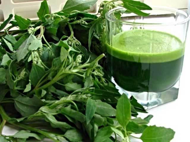О пользе белокочанной капусты, снижение воздействия радиации, противораковое действие и обезболивание