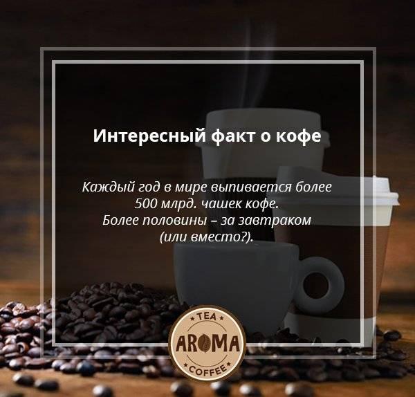 Интересные факты о кофе: 10 коротких и самых удивительных
