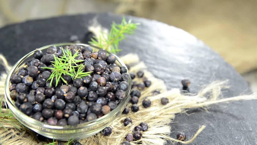Лечебные и полезные свойства можжевельника