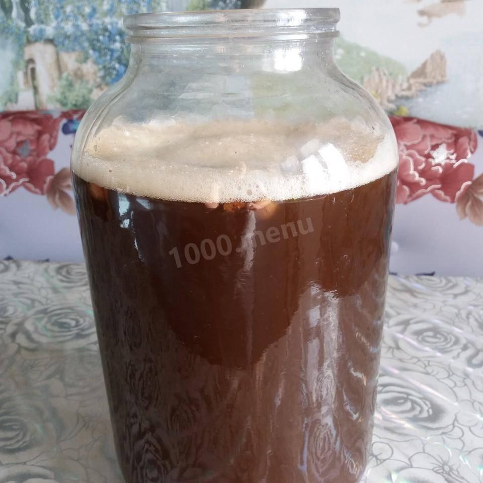 Рецепты кваса из цикория на 5 литров