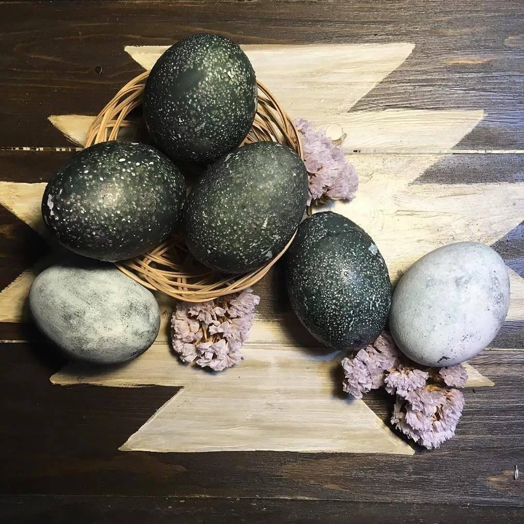 Как правильно красить яйца чаем и кофе - полезные рецепты