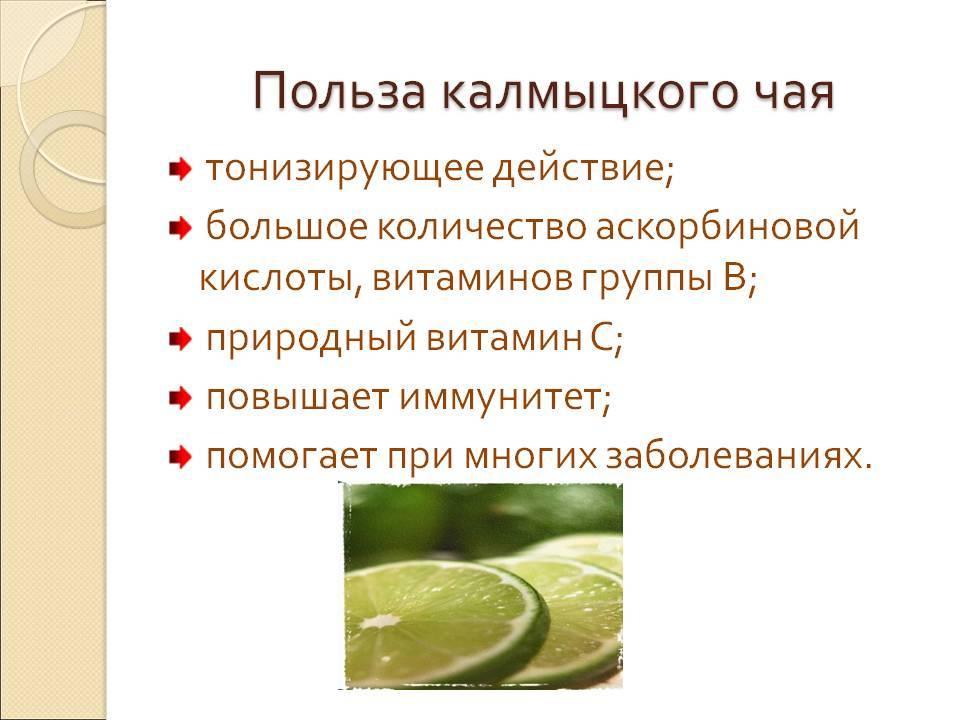 Польза и вред калмыцкого чая, рецепты приготовления джомбы