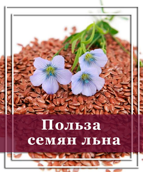Для чего принимают семена льна натощак утром