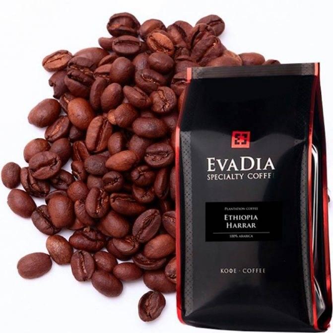 Страна кофе, где выращивают кофейные деревья. крупнейшие производители-экспортеры южной америки, азии, африки
