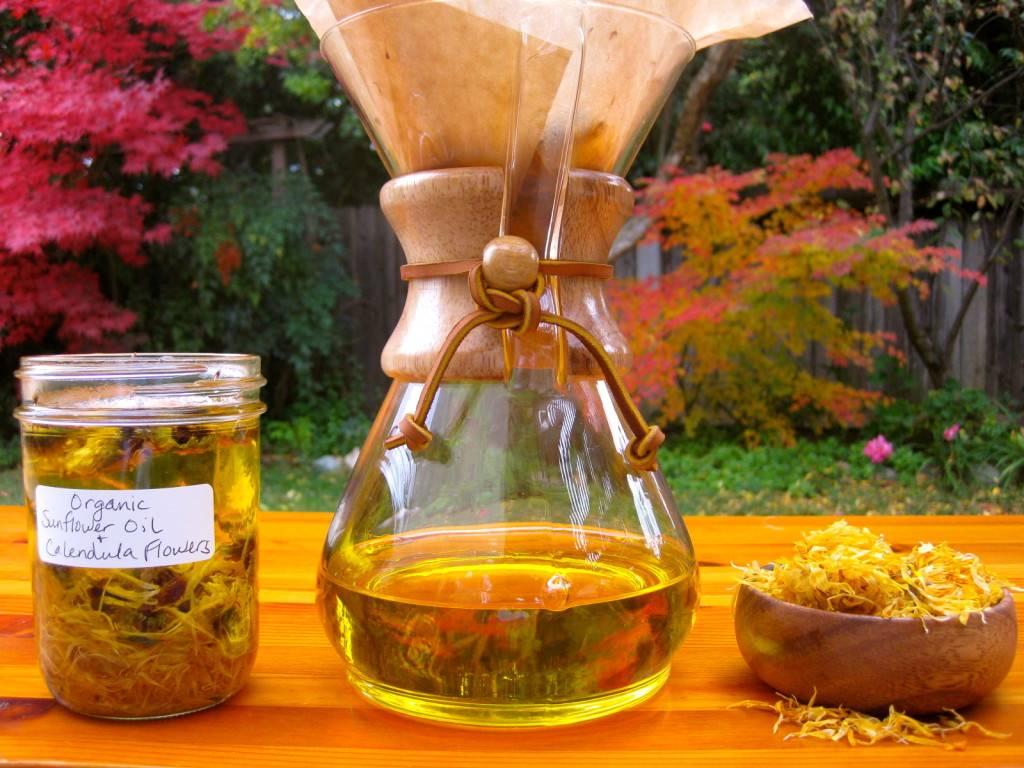 Тыква: польза и вред, противопоказания, целебные свойства, лечение мякотью, соком, семенами, кулинарные рецепты + отзывы