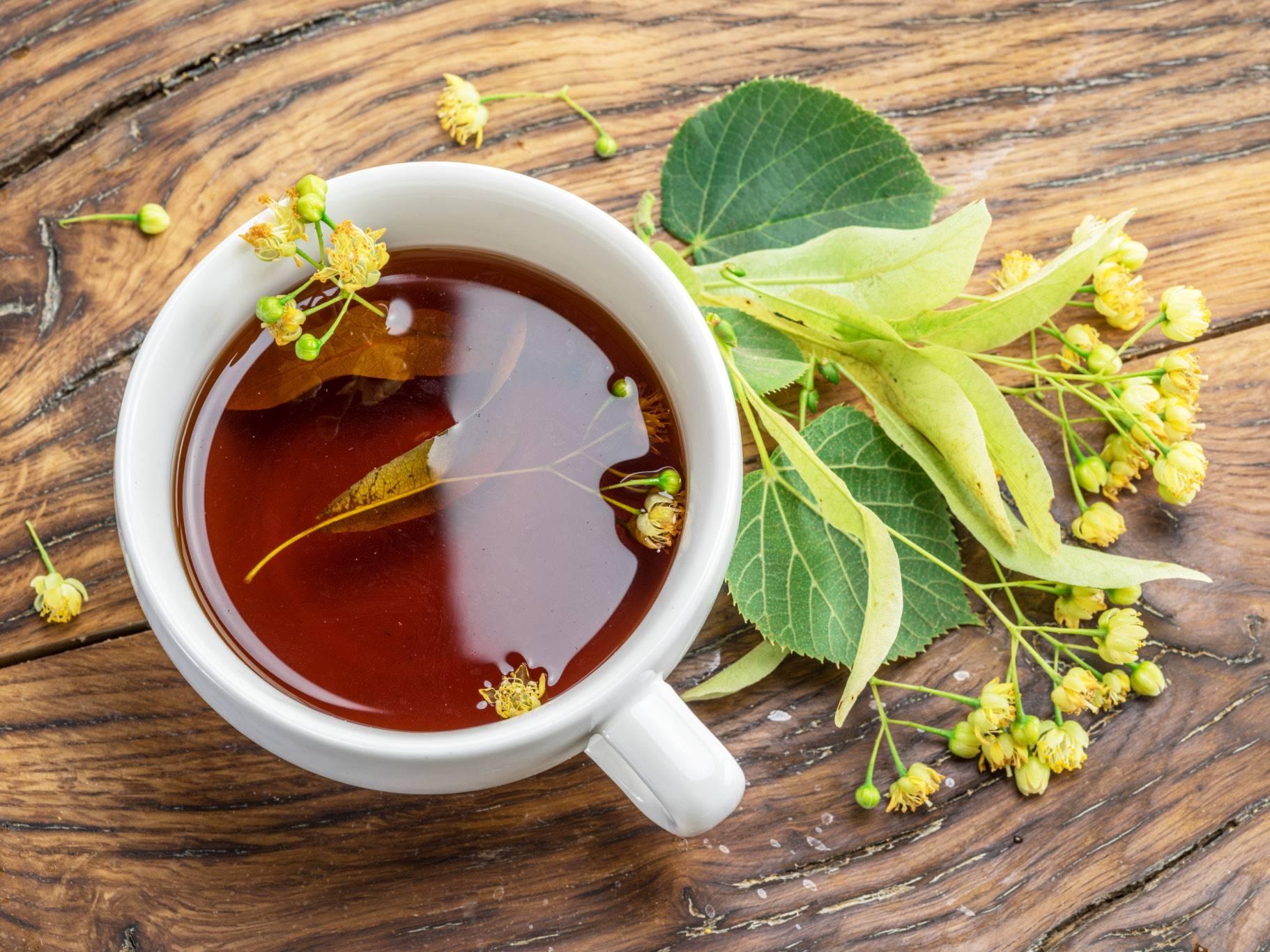 Польза чая из липы: рецепты приготовления при различных недугах, как собирать и заготавливать соцветия и есть ли противопоказания