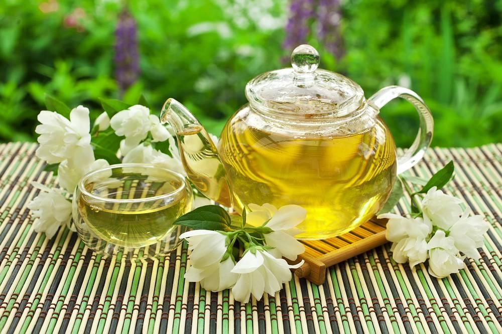 Полезные свойства зеленого чая с жасмином для женщин и мужчин