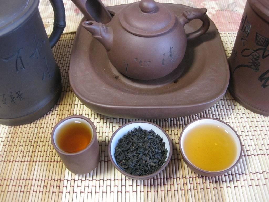 Чай сенча (сентя) – описание, польза и вред, как заваривать