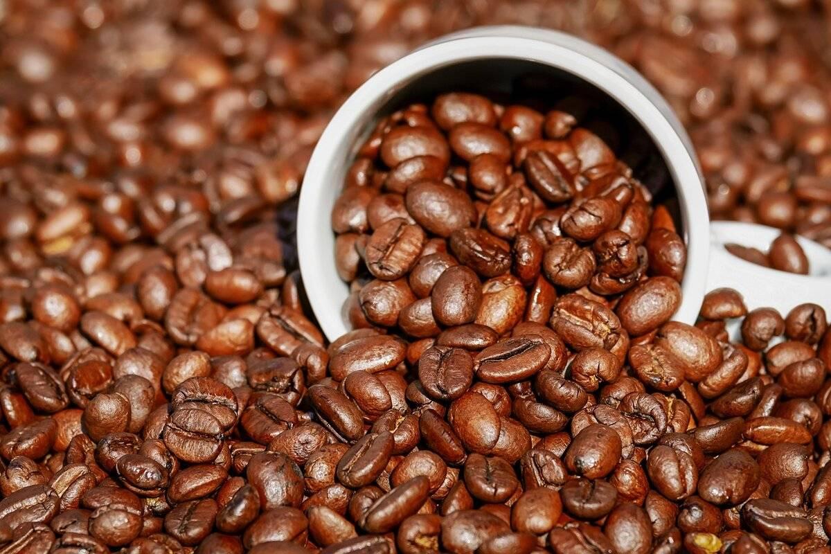 Как называется кофе с молоком: виды и рецепты (видео)