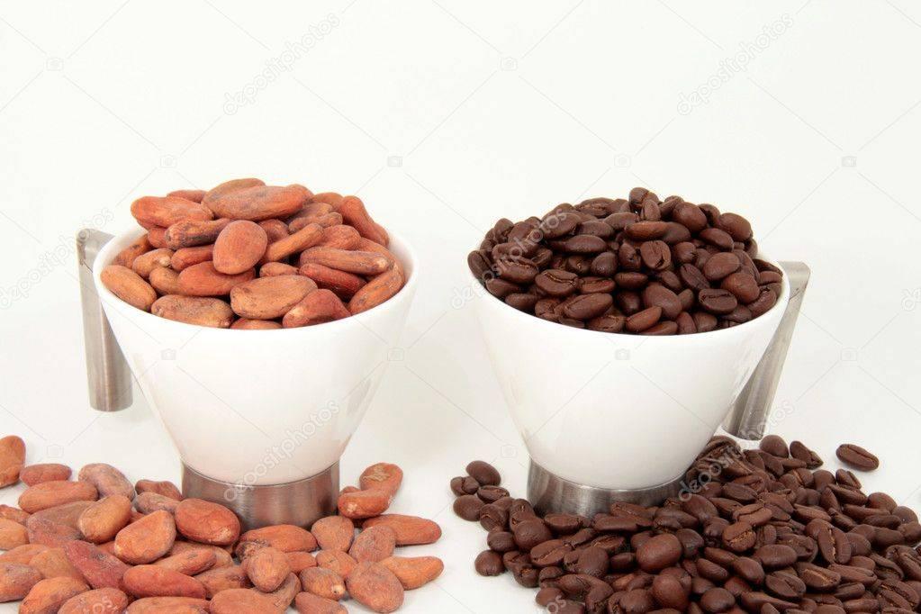 Чем отличается горячий шоколад от какао: состав продуктов, особенности приготовления, сходства и различия
