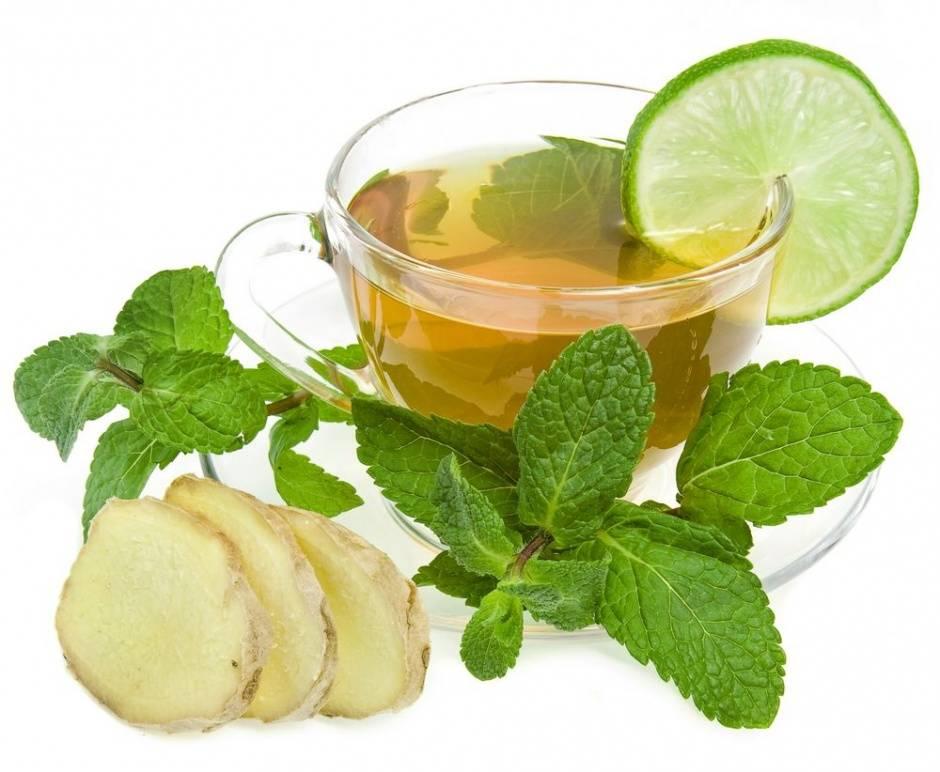 Можно ли пить мятный чай при беременности