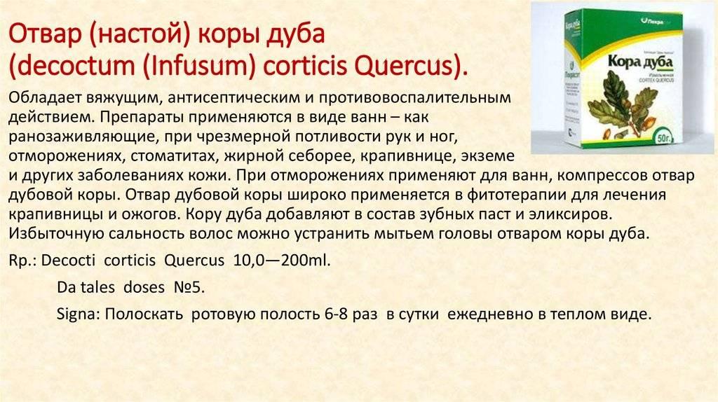 Отвар коры дуба: свойства и противопоказания, применение - lechilka.com