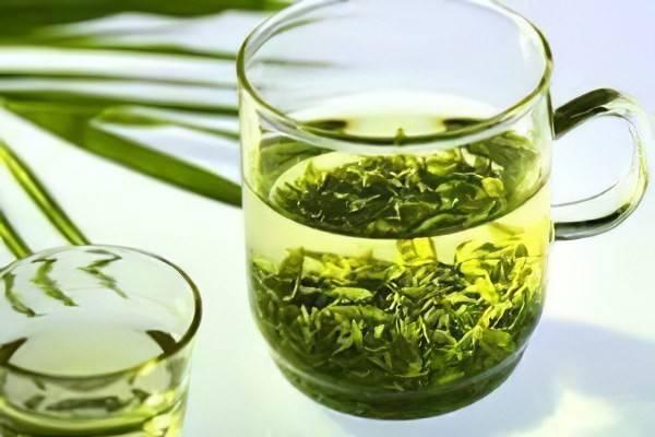 Лечебные свойства и противопоказания софоры японской: лекарственные препараты, рецепты приготовления настойки
