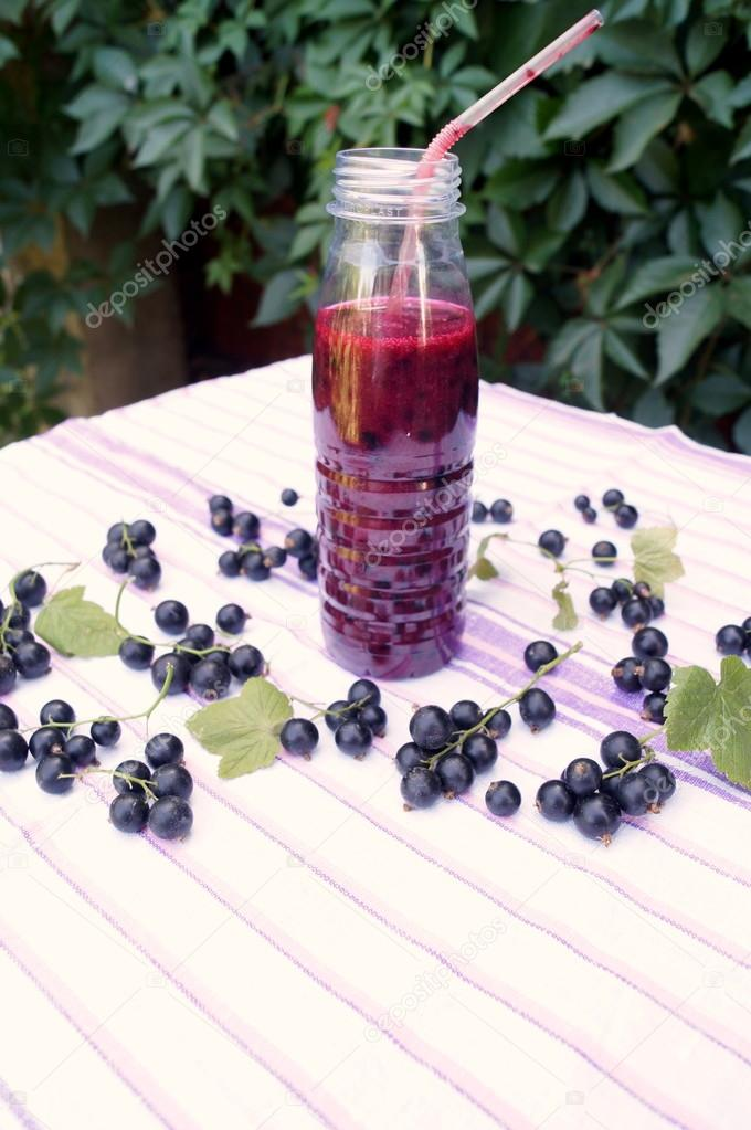 Смузи из черной смородины - польза и рецепты приготволения