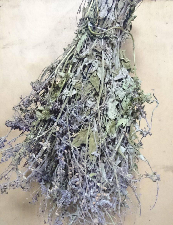 Какие травы можно собирать для чая и когда. какие травы для чая собирать | здоровое питание