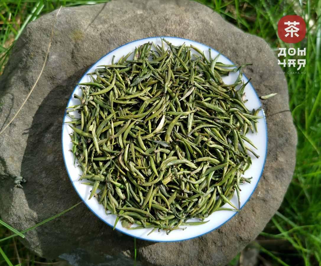 Описание зеленого чая чжу е цин или «свежесть бамбуковых листьев»