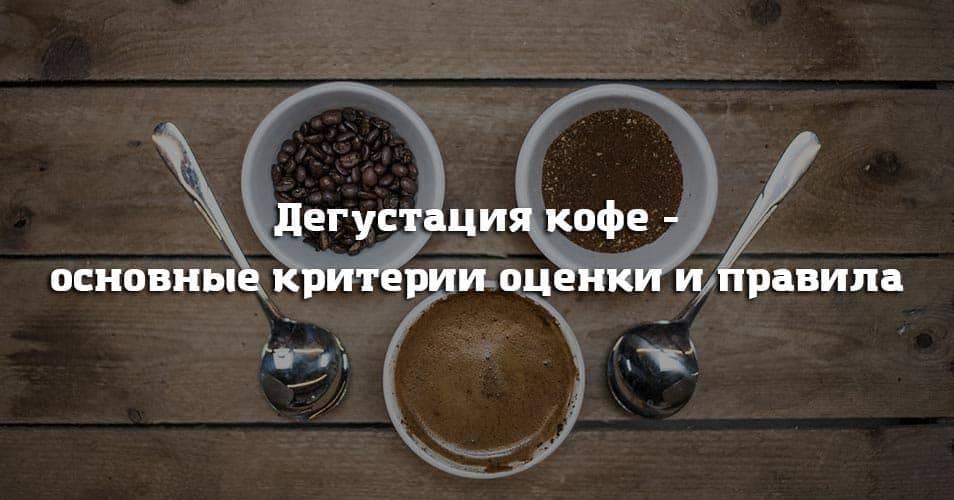 Дегустация кофе. параметры оценки вкуса