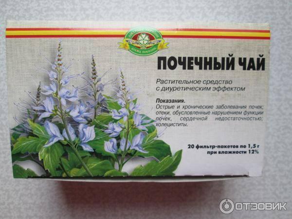 Ортосифона тычиночного (почечного чая) листья: отзывы при беременности, цена, противопоказания - medside.ru