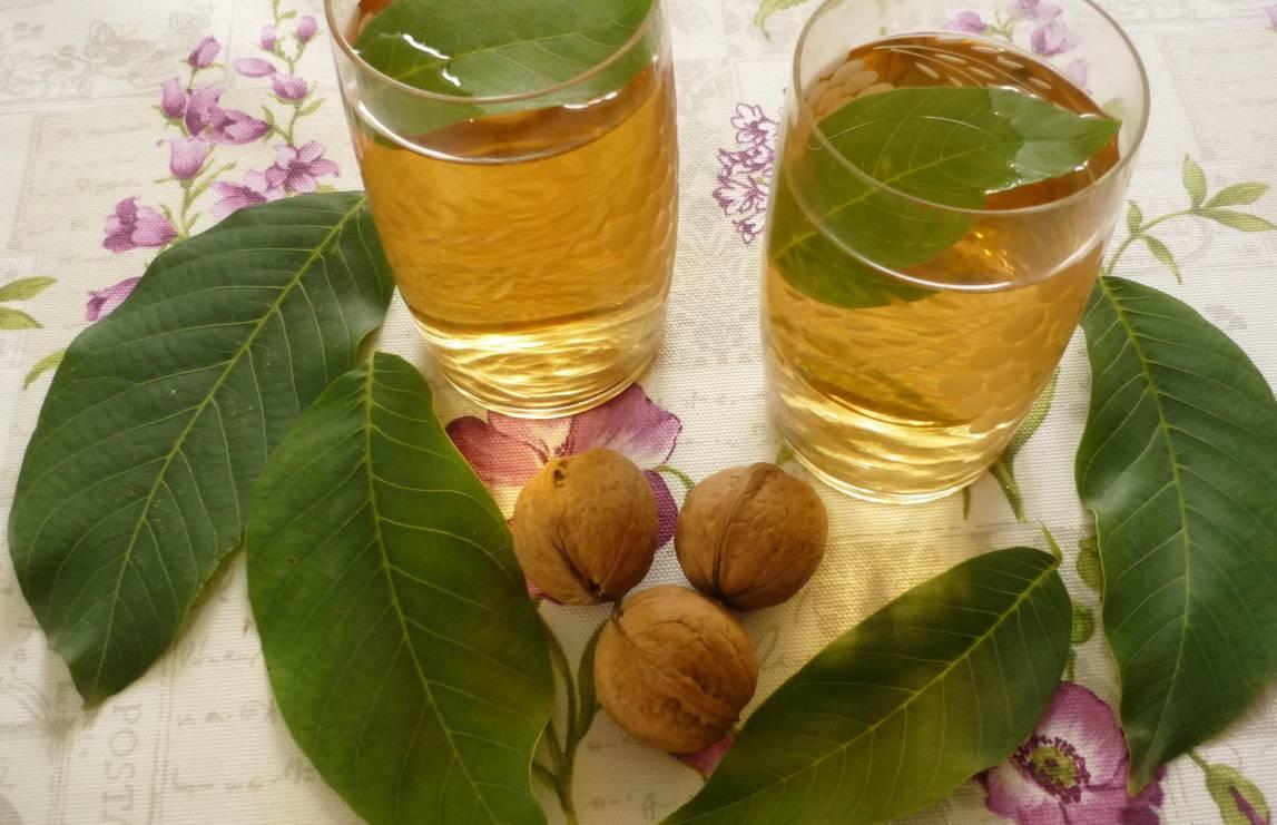 Целебные листья оливковых деревьев и почему они полезнее, чем оливковое масло