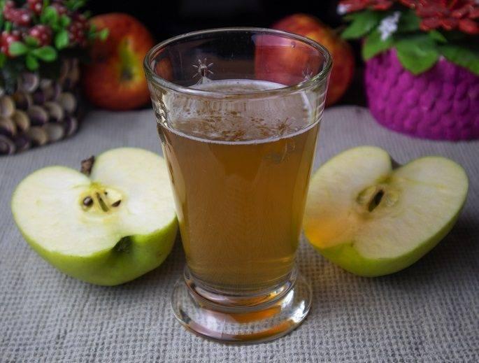 Яблочный квас в домашних условиях из сушеных яблок рецепт приготовления