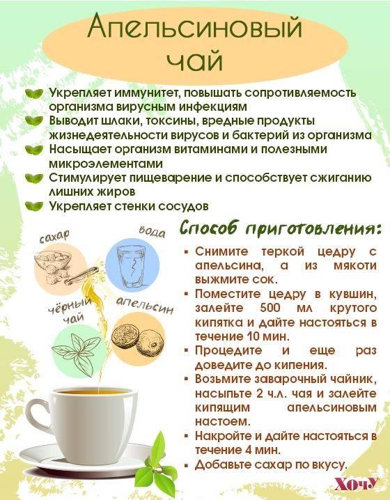 Травяные чаи - витаминные и лечебные - особенности приготовления, польза, рецепты