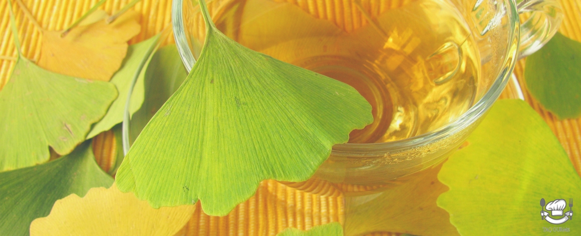 Чай гинкго билоба — чай, продлевающий молодость