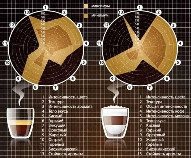 Зожник   гид по кофеину: действие, эффекты, правильные и смертельные дозы