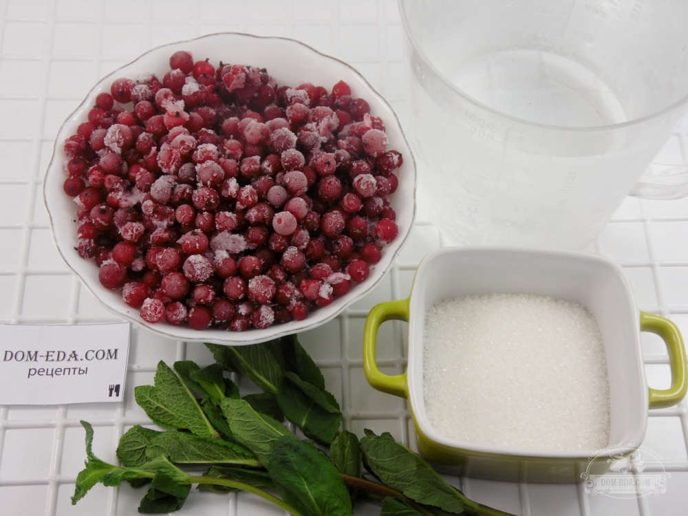 Морс из смородины – готовим летом и зимой! рецепты разных морсов из смородины красной, черной, замороженной и свежей