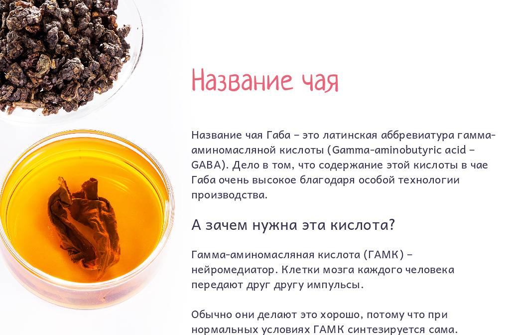 Гуава чай – польза для здоровья