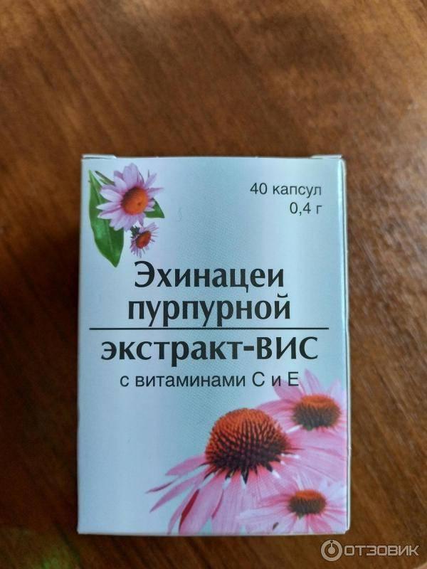 Эхинацея для детей (сироп, настойка) для иммунитета как принимать детям: инструкция, лечебные свойства