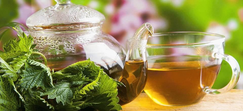 Травяной чай: средство для похудения или источник проблем