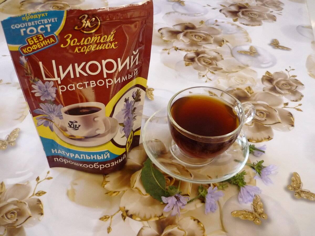 Цикорий вместо кофе: польза и вред, рецепты