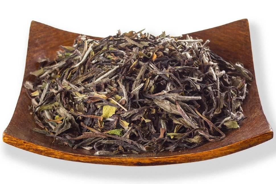 Чай бай му дань (баймудань) полезные свойства как заваривать