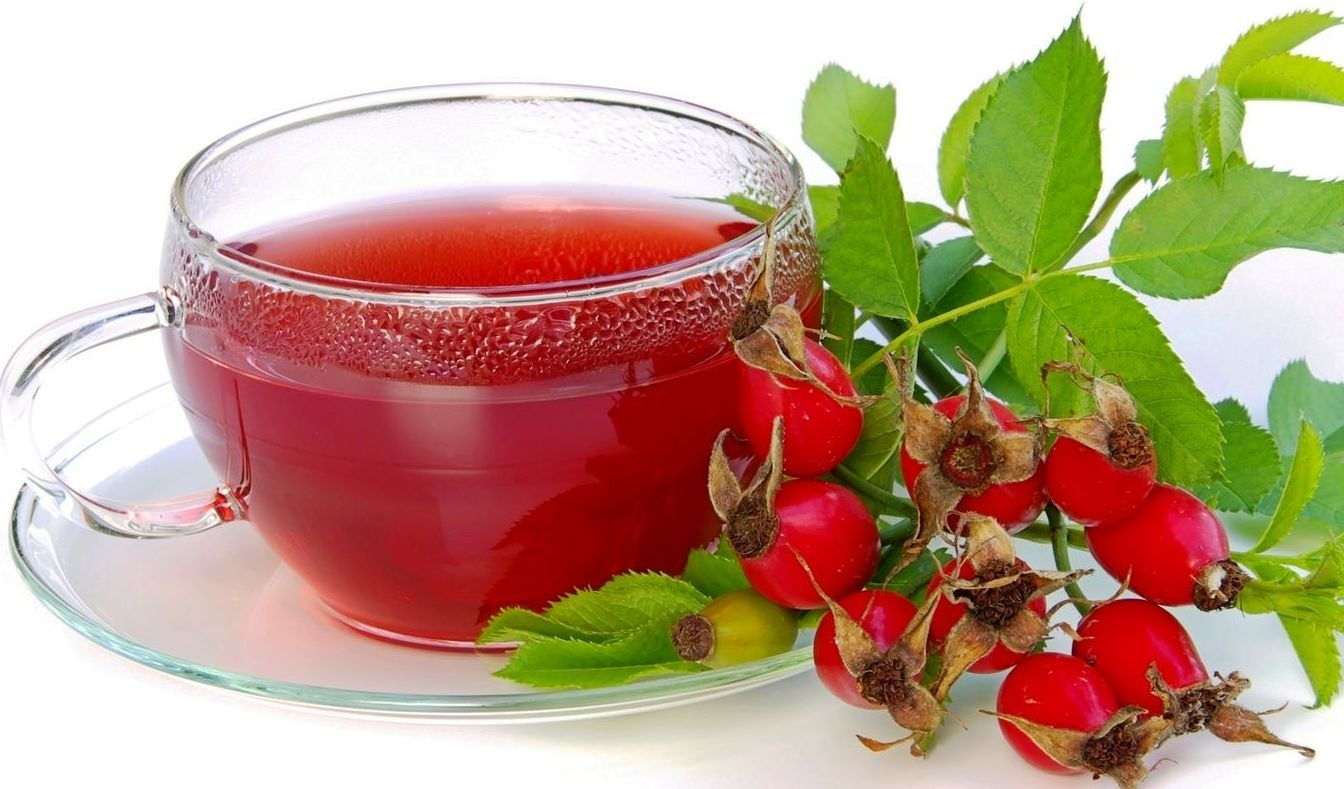 Барбарис — полезные свойства, рецепты лечения, противопоказания   здоровье и красота