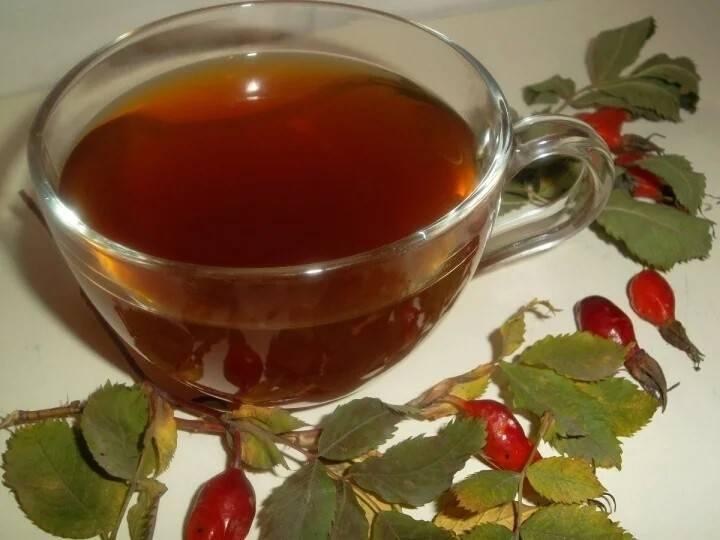 Чай из шиповника – иммуностимулирующий общеукрепляющий напиток
