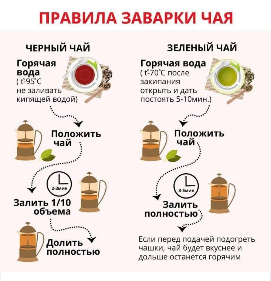 Ромашковый чай: состав, калорийность, норма в день, польза и вред