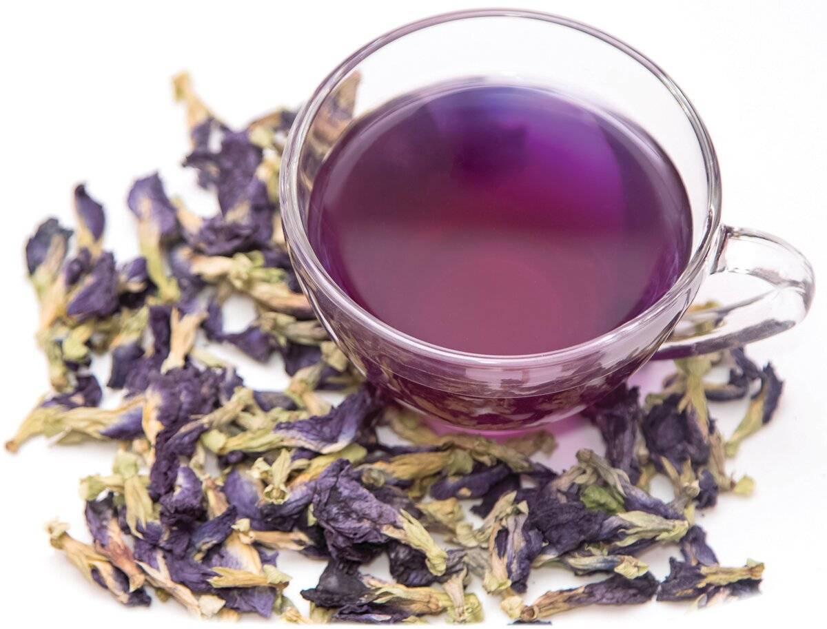 Цветочный синий чай butterfly pea tea из тайланда: полезные свойства и отзывы покупателей