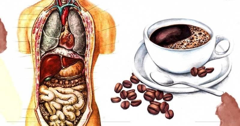 Понос от кофе причины