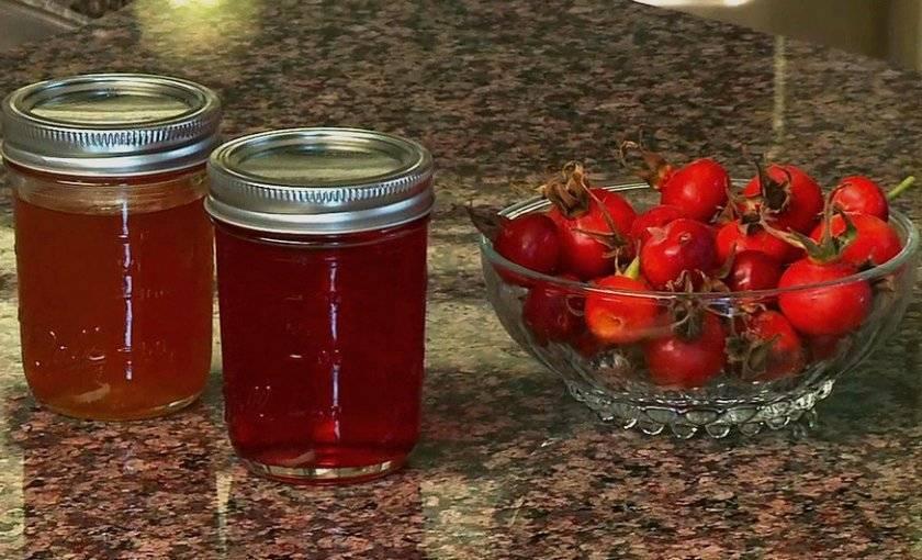 Отвар шиповника: как приготовить правильно из сухих плодов, как принимать с пользой для организма, противопоказания и возможный вред, можно ли при беременности